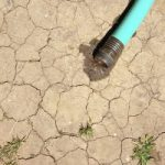 Hose placed on cracked, dried out land.