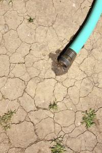 dried dirt hose