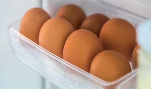 Refigerator Shelf with Eggs