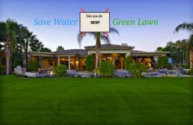 How to Save Water and Keep Your Lawn Looking Good