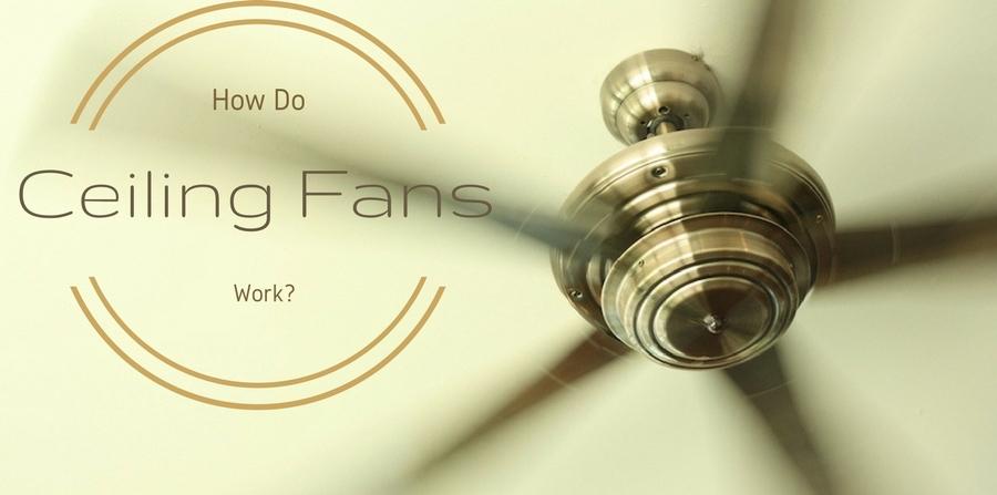 """Ceiling fan in motion. """"How do ceiling fans work?"""""""