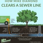 How Mike Diamond Clears a Sewer Line