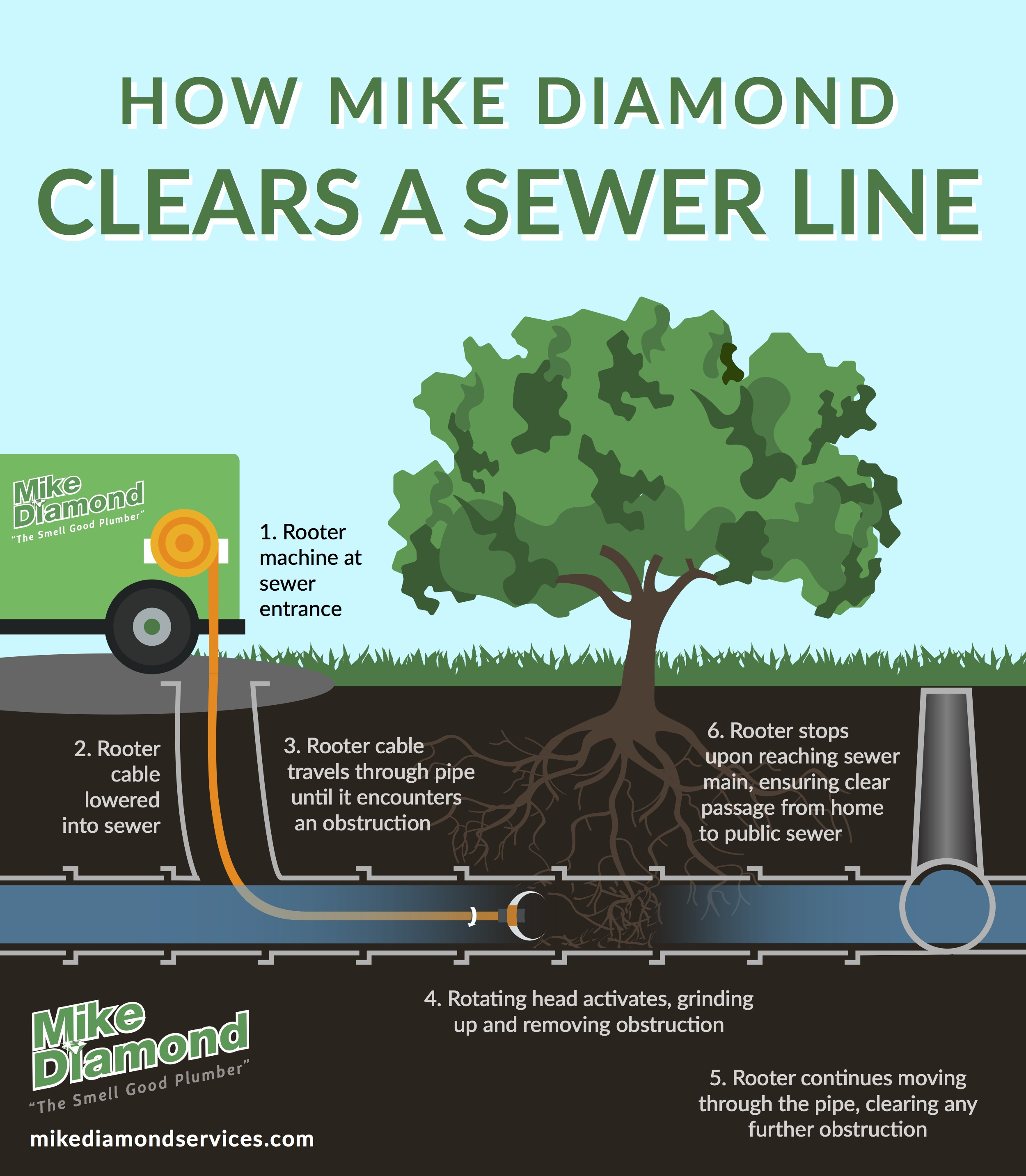 How to Clear a Sewer Line Infographic