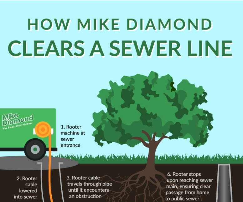 Infographic How Mike Diamond Clears A Sewer Line