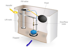 Adjust the flapper in your toilet tank to make your flush stronger
