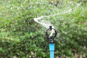 sprinkler repair is one of the most common plumbing repairs we make in hollywood