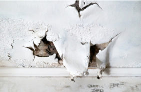 Where Water Damage Comes From and How to Prevent It